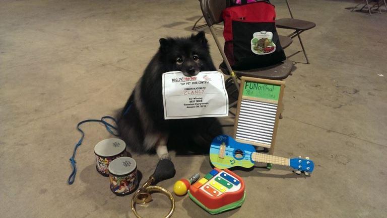 Clancy one-dog band