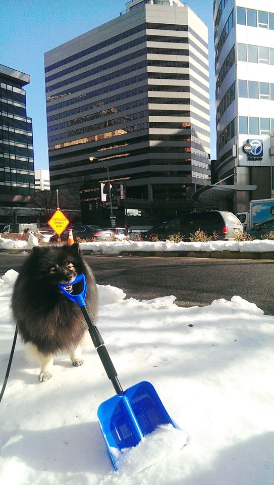 Clancy in front wjla
