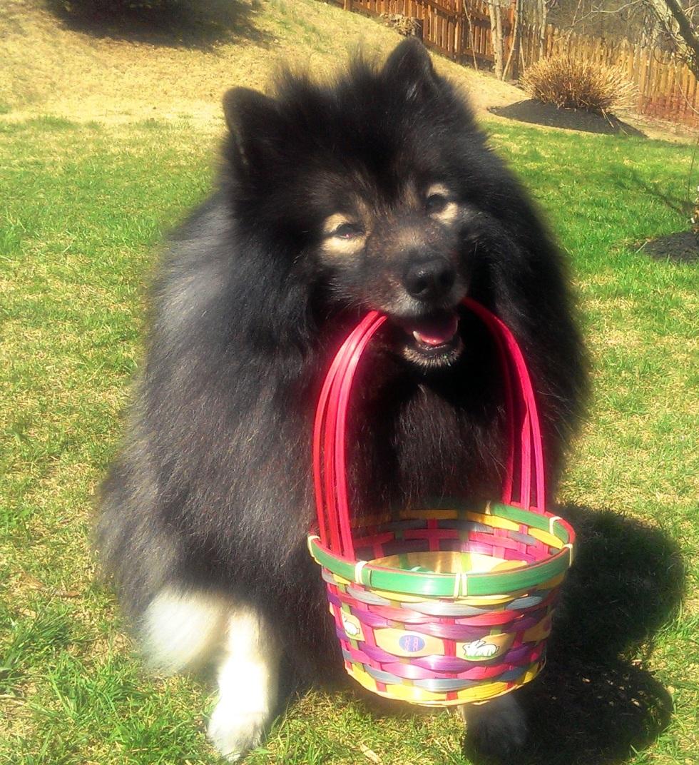 Clancy Easter basket 1